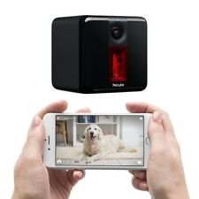Petcube Play: Pet Camera with 1080p Video, 2-Way Audio, Night Vision, and Laser