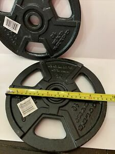 Golds Gym Pair Of Two (2) 10 Pound lb Weight Plates - 20 lbs Total