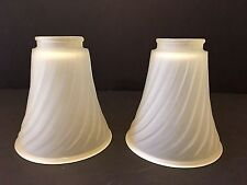 Vintage set of 2 Frosted Glass Shades
