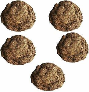 Cow Dung Cakes/Gobar Upla for Use in Pooza Hawan (Brown) (1 KG)