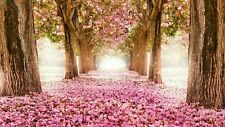 Pink Cherry Blossom Trees Canvas 20x30 Inches Wall Art
