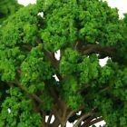 5 Pieces Realistic Green Model Tree 14.5Cm 150-75 For Railway Park Landscape