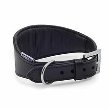 OPENBOX Ancol Greyhound Padded Leather Collar 47 Cm Black