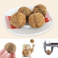 Essbare gesunde natürliche Katzenminze jagen die Reinigungszähne Katze-Haus N6A6