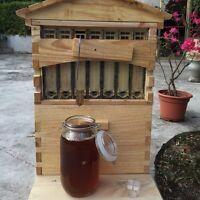 7PCS Upgraded Beekeeping Tool Hive Frames + Beehive Wooden Brood Box 2016