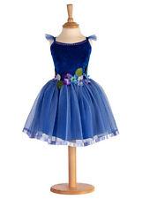 Princesse féérique UK, bleu roi Joli fée déguisement, robe soirée 6/8 ans