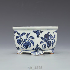 old  China  the ming dynasty  Hand painted blue and white fruit stripe