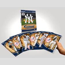 2 New York Yankee FATHEAD 2009 MLB Tradeable Team Set