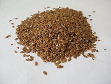 200 graines de Lin cultivé à semer (Linum Usitatissimum)H844 LINSEED SEEDS SAMEN
