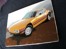 VW SP2 ACRYLIC PAINTING ON CANVAS ART FROM BRAZIL Puma