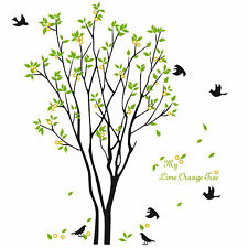 Green Tree Wall Decal Sticker Large Vinyl Photo Picture Frame Removable Room