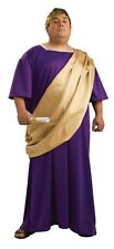 Roman Toga Men's Plus Size Long Purple Gown W/ Gold Drape & Laurel Wreath Plus
