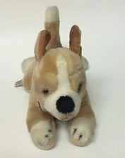 """Steiff Knopf Im Ohr Chihuahua American Kennel Club Toy Stuffed Plush 10"""""""