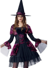 WOMENS SIZE L (12-14)  GOTHIC WITCH COSTUME  2 PIECE DRESS AND HAT PINK MIX
