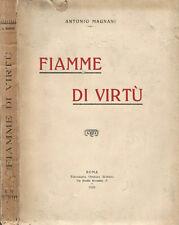 Fiamme di Virtù