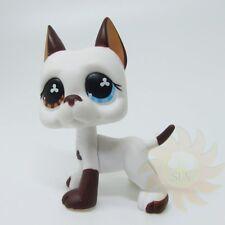 Littlest Pet Shop Animal LPS Toys #577 Brown Blue Eye Great Dane Dog Rare B1
