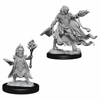 PATHFINDER DEEP CUTS UNPAINTED MINIATURES EVIL WIZARDS (PACK OF 6)