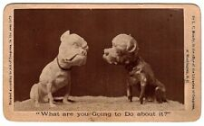RARE CDV Photo - Comical Caricature Toy Statues DOGS 1873 - Mundy Utica NY