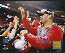 Albert Pujols World Series Celebrate St. Louis Cardinals 8x10 Photo W/ Toploader