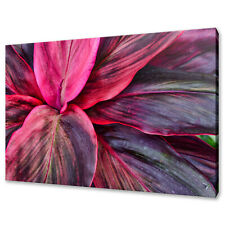 BEAUTIFUL PINK TROPICAL LEAVES MODERN DESIGN CANVAS PRINT WALL ART PICTURE