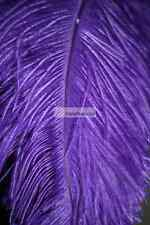 Purple Ostrich Feathers/Plume/Wing/ Horse Feather 22-24 inch 50  Pcs (GA,USA)