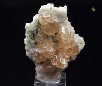 QUEBUL FINE MINERALS - GARNET var. GROSSULAR, DIOPSIDE - Jeffrey mine, Canada