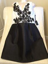 Gorgeous NWT Vera Wang Dress Black / White Lace Cocktail Dress Size 14