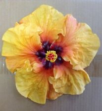 *Kalie'S Kiss* Rooted Tropical Hibiscus Plant*Ships Bare Root*