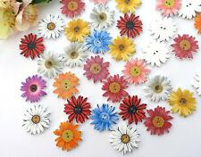5x Knopf Blumen 25mm Margeriten Knöpfe Holz Damen Tracht Jacke 2 Loch Blüte bunt