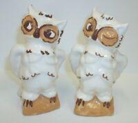 Big Tall White Brown Winking Wise Owl Salt Pepper Shaker Set