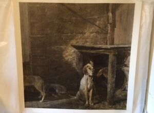 Andrew Wyeth 1972 Raccoon Plate Signed *Original Print