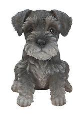 Vivid Arts Pet Pal Dogs Min Schnauzer Puppy