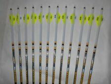 12 Gold Tip Hunter Pro 5575 400 Carbon Arrows Custom White Dip Crest/Blazer Vane