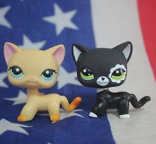 2pcs #2249 #339 Littlest Pet Shop RARE Black & yellow Short Hair Cat kitty LPS