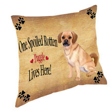 Puggle Spoiled Rotten Dog Throw Pillow 14x14