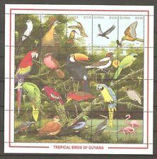 Vögel Papagei Kolibri Specht Geier Tukan Ara ua. Guyana 3427/46 postfrisch