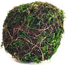 Darice 13323-08 Greenery Ball Vine Moss Green 8 Inches