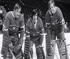 Montreal Canadiens Goalies Phil Myre Rogie Vachon  Ken Dryden 8 X 10 Photo