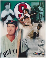 Boston Red Sox Ted Williams Glossy 8x10 Collage Photo Print #9 B&W Color
