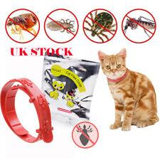 Cat Kitten Adjustable Flea Collar Neck Strap Remedy Anti Flea Mite Acari Tick NE