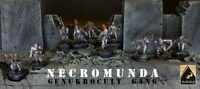 NECROMUNDA GENUKROCULT GANG CONVERSION PAINTED - WARHAMMER 40K