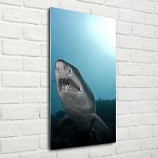 Wandbild Kunst-Druck auf Hart-Glas hochkant 70x140 Großer Hai