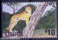 Cheetah, Wildcats, Wild animals, Liberia MNH (P24)