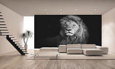 Photo Wallpaper Beautiful Lion GIANT WALL DECOR PAPER POSTER FOR BEDROOM