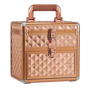 Large Nail Polish Vanish Bottle Storage Box Cosmetic Vanity Makeup Beauty Case