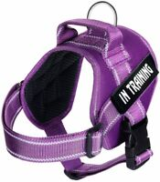 In Training Vest No Pull Harness For Large Service Dog Reflective Collar XXL XL