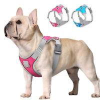 Hundegeschirr Mesh Gepolstert Reflektierend Brustgeschirr Französische Bulldogge