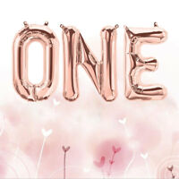 ONE Rose Foil Balloon Banner Bunting letters Baby First Birthday Party Decor 16""