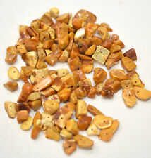 Beads Baltic Amber Nuggets 6-22mm