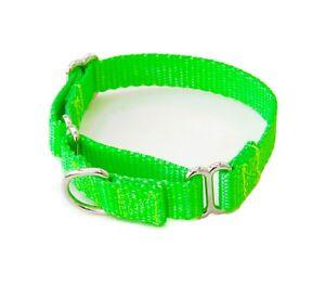 Dog Collar 5/8 Inch Nylon Buckle or Martingale Dog Collars XS - L